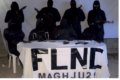 Il ritorno del FLNC?